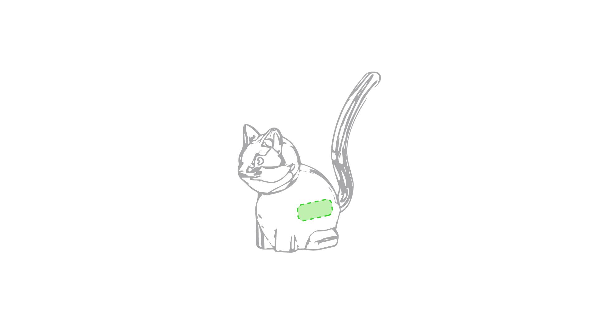 En el lateral del gato
